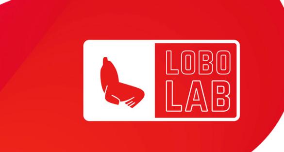 Convocatoria: Lobolab 2016